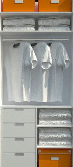 razporeditev notranjosti omare